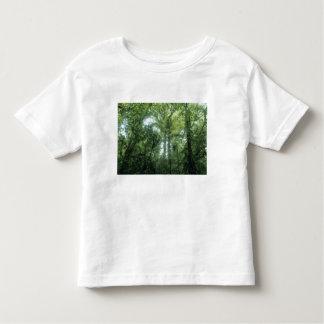 Monteverde Cloud Forest, Costa Rica. Toddler T-Shirt