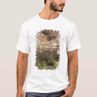 Montezuma Castle National Monument, Arizona T-Shirt