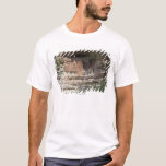 'Montezuma castle Pueblo Village Indian Ruins, T-Shirt
