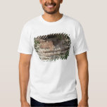'Montezuma castle Pueblo Village Indian Ruins, Tee Shirts