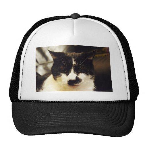 Monty Black and White cat Mesh Hats