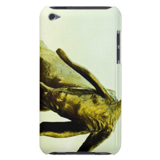 Monument to the bull. iPod touch cases