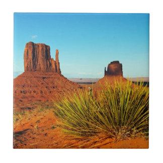 Monument Valley, Arizona Tile