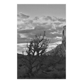 Monument Valley (black and white) 3 14 Cm X 21.5 Cm Flyer