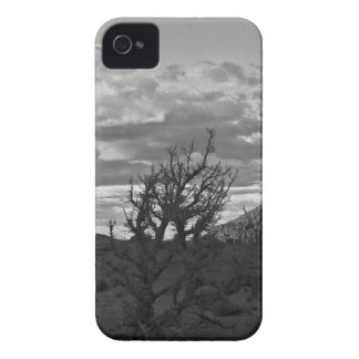 Monument Valley (black and white) 3 iPhone 4 Covers