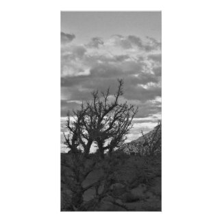 Monument Valley (black and white) 3 Photo Greeting Card