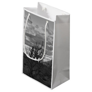 Monument Valley (black and white) 3 Small Gift Bag