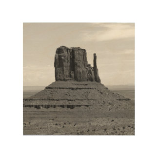 Monument Valley (black and white) Wood Wall Art