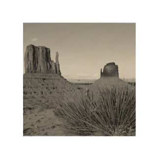 Monument Valley in Arizona/Utah (black and white) Wood Wall Decor
