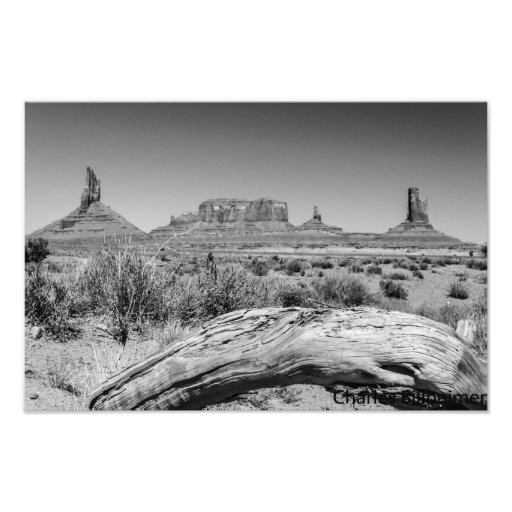 Monument Valley over fallen tree Photographic Print