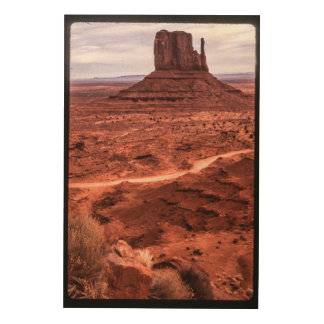 Monument Valley Wood Wall Art