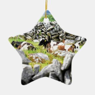 Moo Cows Ceramic Star Decoration