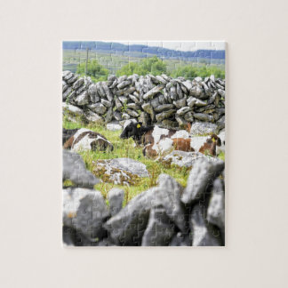 Moo Cows Jigsaw Puzzles