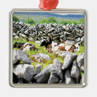 Moo Cows Silver-Colored Square Decoration
