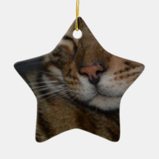Moody Bengal Cat Christmas Ornament