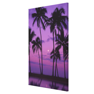 Moon and Palm Tree Canvas Print