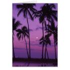 Moon and Palm Tree Card