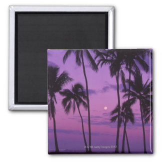Moon and Palm Tree Magnet