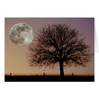 Moon and Tree Greeting Card