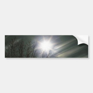 Moon and Tree Photo Bumper Sticker