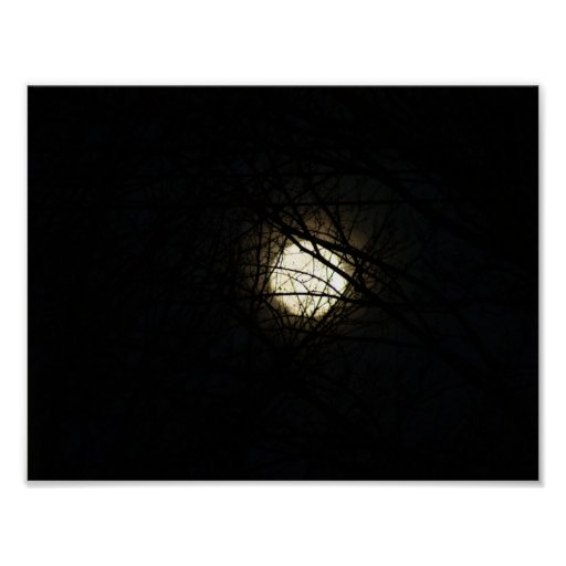 Moon Behind the Tree Poster