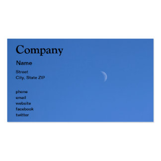 Moon Double-Sided Standard Business Cards (Pack Of 100)