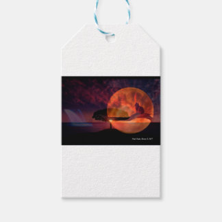 Moon cat meditations. gift tags