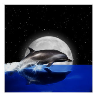 Moon Dolphin Poster