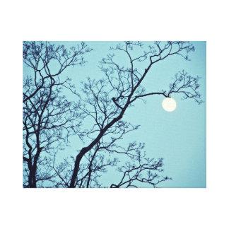 Moon Hanging on a Limb Canvas Print