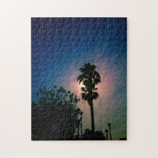 Moon in the Palms Puzzle