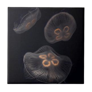 Moon Jellyfish Swimming Tile