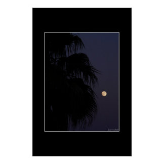 Moon Palm Posters