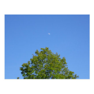Moon Post Card