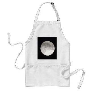 Moon satellite standard apron