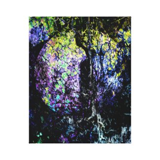 Moon Seed Canvas Print