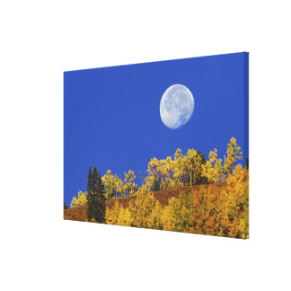 Moon setting at sunrise, Gunnison National Canvas Print