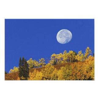 Moon setting at sunrise, Gunnison National Photo