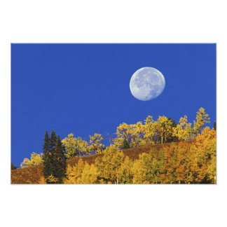 Moon setting at sunrise, Gunnison National Photo Print