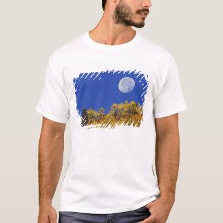 Moon setting at sunrise, Gunnison National T-Shirt