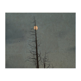 Moon Speared By Tree Cork Fabric