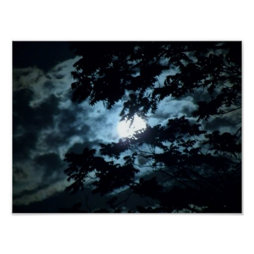 Moon through the trees. poster