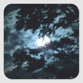 Moon through the trees square sticker