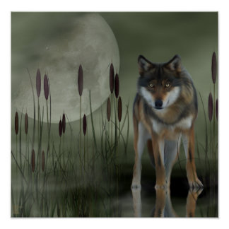 Moon Wolf - Wolf, Animals Poster