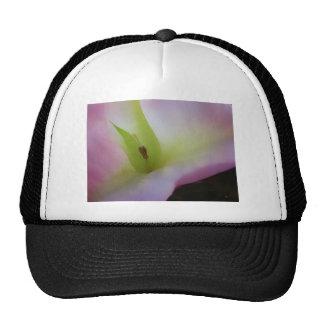 Moonflower Pink Trucker Hats
