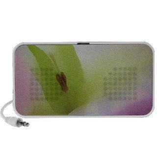 Moonflower Pink Mp3 Speaker