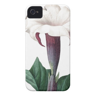 Moonflower vintage illustration of Redoute iPhone 4 Covers