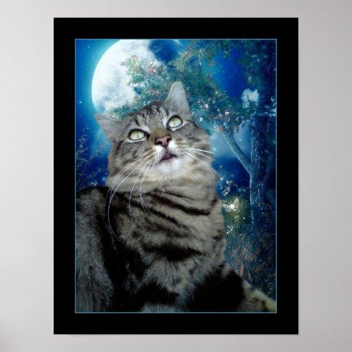 Moonlight Fizz Poster