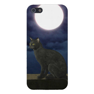 Moonlight Kitty Case For iPhone 5/5S