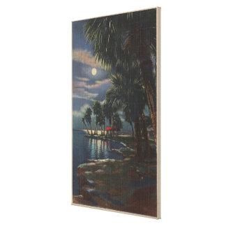 Moonlight on a Florida BeachFlorida Canvas Print