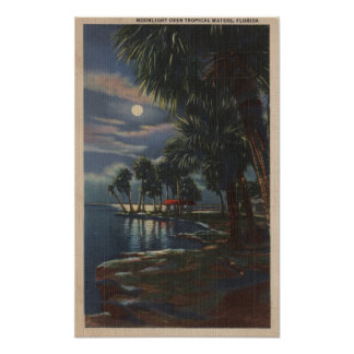 Moonlight on a Florida BeachFlorida Poster